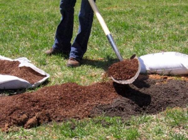 подготовить землю для посадки малины